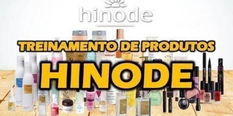 Treinamento de Vendas completo Hinode